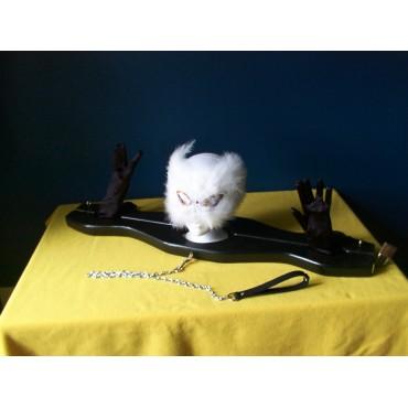 Pranger Restraint Neck & Wrist